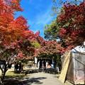 Photos: 牛窓神社境内