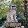 牛窓神社の狛犬