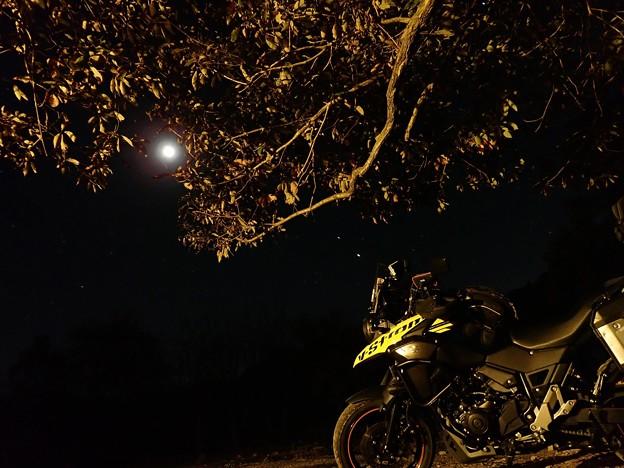 月とV-Strom