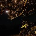 Photos: 月とV-Strom