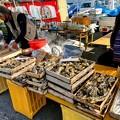 Photos: 旬の牡蠣