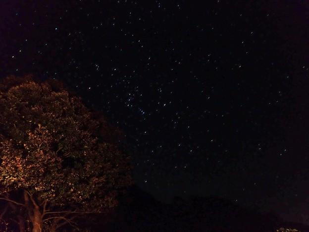 Photos: 満天の星空