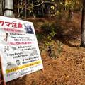 Photos: クマ注意!