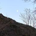 Photos: 月が上ってきた
