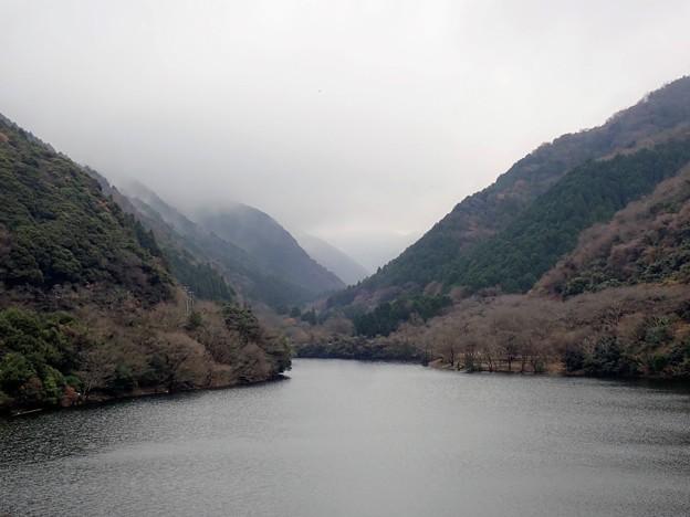 霧が残る諭鶴羽ダム
