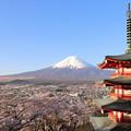 写真: 忠霊塔と富士2
