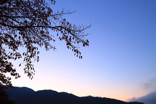 Photos: 最後の夜明け