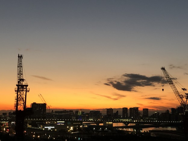 Photos: 豊洲夕景