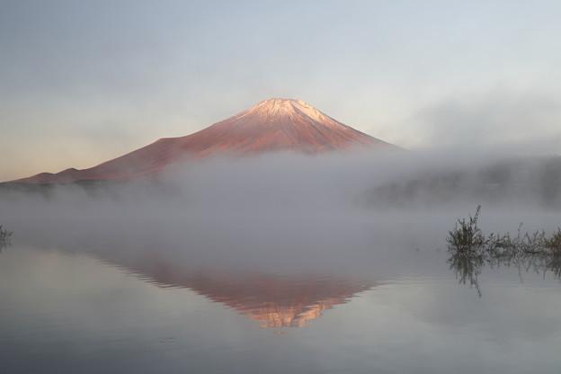 Photos: 靄立つ季節