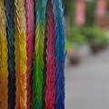 Photos: 「Wish color。」