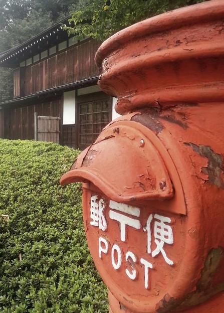 シリーズ散歩道              東京郊外