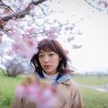 桜の季節に君と。