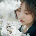 Photos: 桜舞い散る中に忘れた記憶