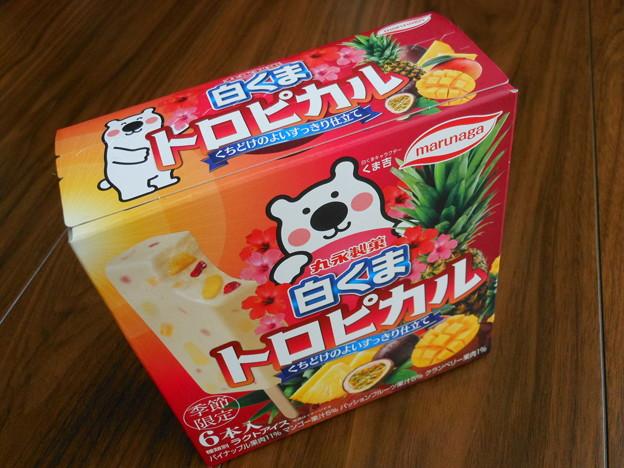 丸永製菓*季節限定・白くまトロピカル1