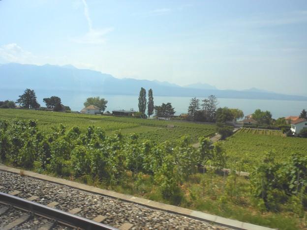 スイスの鉄道の車窓から~レマン湖