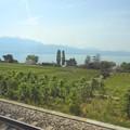 写真: スイスの鉄道の車窓から~レマン湖
