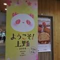 Photos: 2019・上野駅はパンダと桜