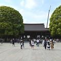 Photos: 明治神宮9