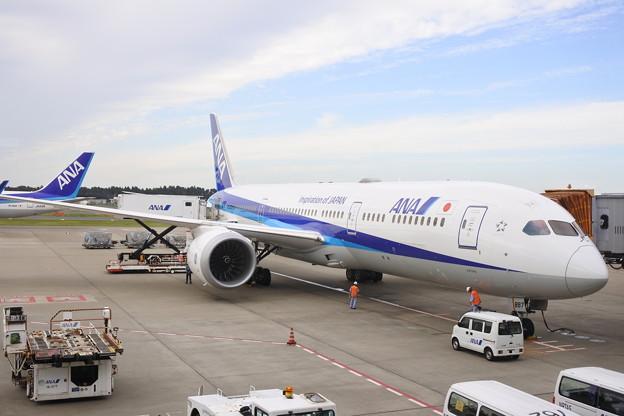 成田空港*ANA