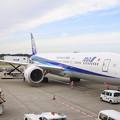Photos: 成田空港*ANA