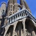 Photos: バルセロナ*サクラダ・ファミリア教会15
