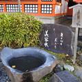 Photos: 京都・八坂神社2