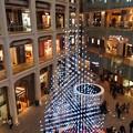 丸の内・南口*KITTEのクリスマスツリー1