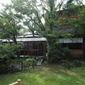 Photos: 石和温泉 「くつろぎの邸 くにたち 」中庭