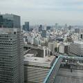 Photos: シャングリ・ラ ホテル東京*ハロウィーン アフタヌーンティー7