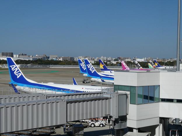 福岡空港・飛行機がいっぱい!