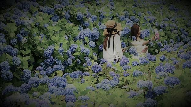 Photos: 自撮りの女(ひと)