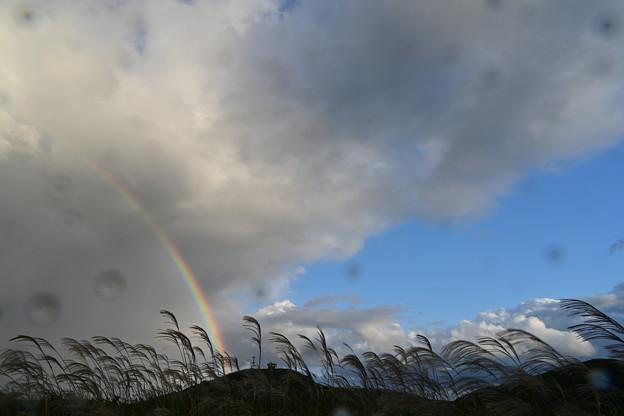 にわか雨に虹