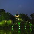 Photos: 猿沢池
