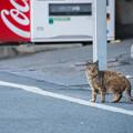 Photos: んっ!!