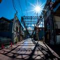 Photos: まぶしい太陽