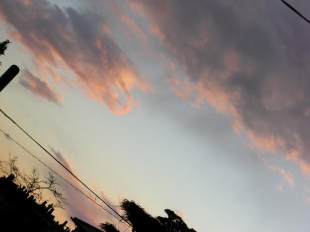 曇りの景色