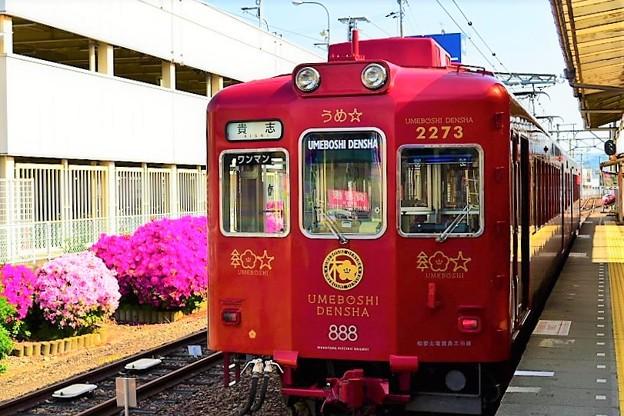 うめ星電車