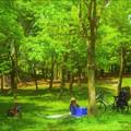 鶴見緑地の芝生