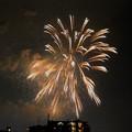 写真: 夜空を彩る花火