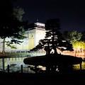 Photos: 奈良国立博物館庭園