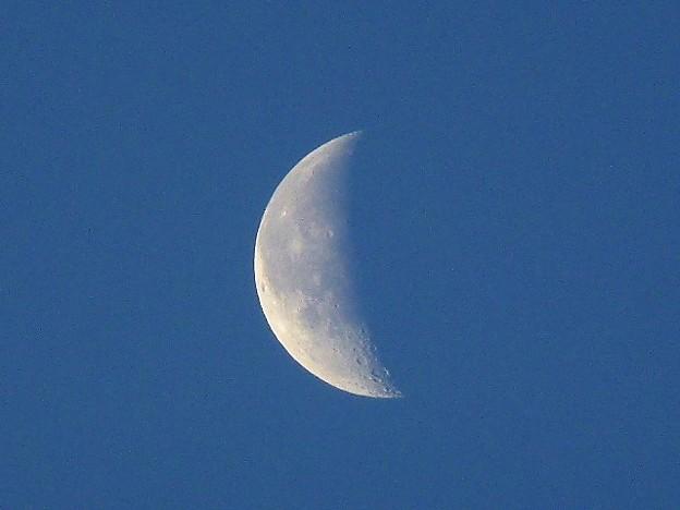 明け方の月