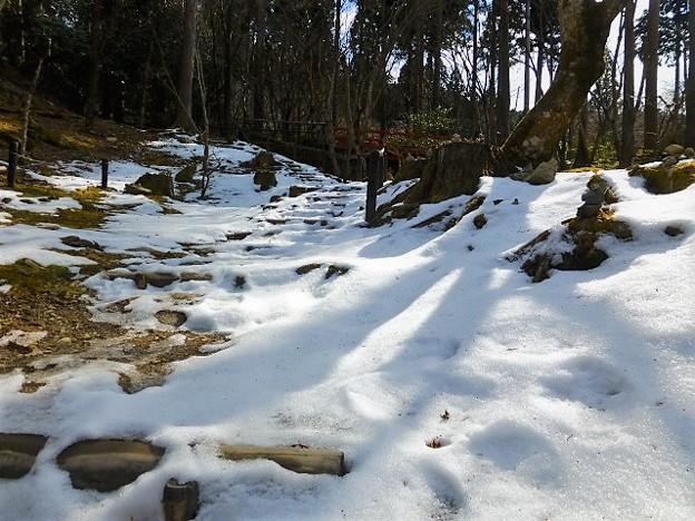 律川沿いの積雪