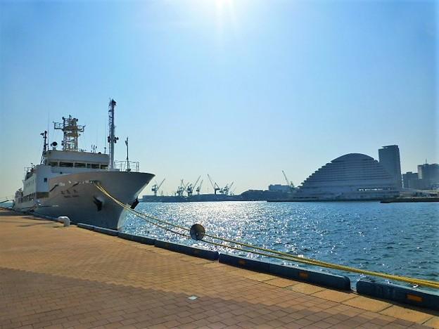 神戸新港第一突堤