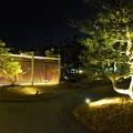 写真: 神戸みなと温泉 蓮の日本庭園