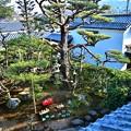写真: 上から見下ろすお庭