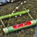 写真: 五個荘の水路に飾られたひな飾り