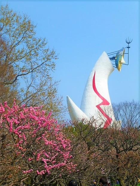 梅と太陽の塔