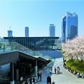 Photos: うめきた広場