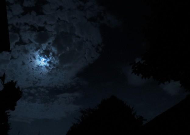 夜空に現る