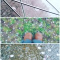 写真: It's a rainy day.